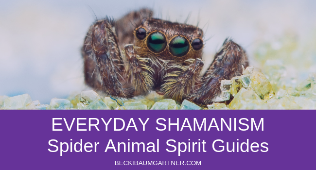 Everyday Shamanism: Spider Animal Spirit Guides