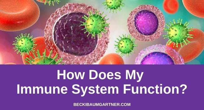 How Does My Immune System Function?